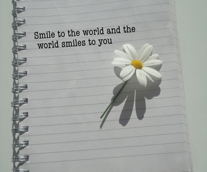 book, flower, and text image