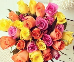 flowers and rose image