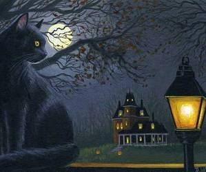 black cat, candle, and cat image