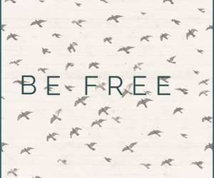 belive, bird, and Dream image