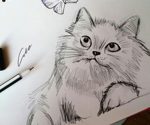 drawing, cat, and sweet image