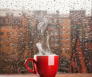 coffee, rain, and autumn image