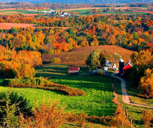 autumn, countryside, and fall image