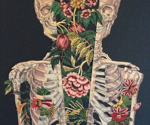 flowers, skeleton, and skull image