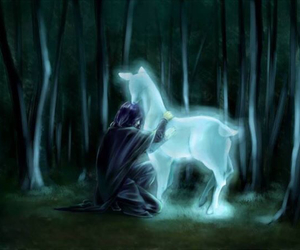 hp, harry potter, and patronus image
