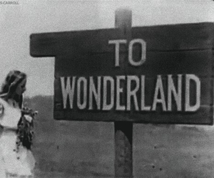 wonderland, alice, and black and white image
