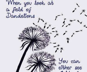 dandelion, Dream, and field image