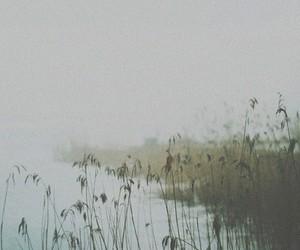 nature, lake, and vintage image