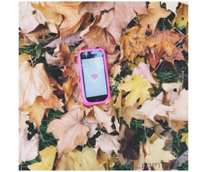 iphone, leaves, and pink image
