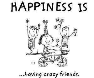 happiness, friends, and crazy image