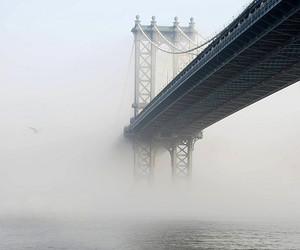 bridge, fog, and water image