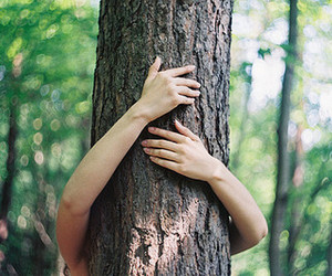 tree, hands, and nature image