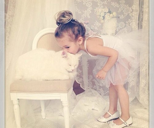 cat, cute, and baby image