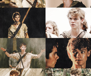 newt, labyrinthe, and thomas sangster image