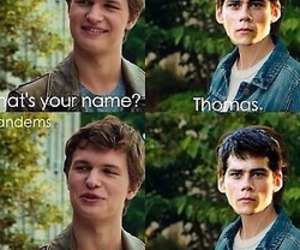 thomas, the maze runner, and funny image