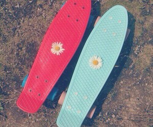 flowers, blue, and skate image