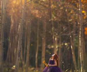 Dream, forest, and girl image
