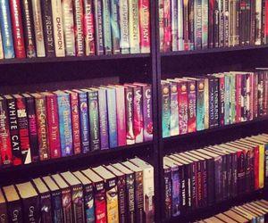 paradise and shelf image
