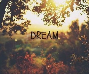 Dream, quotes, and vintage image