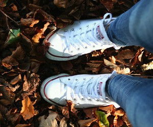 autumn, brown, and converse image