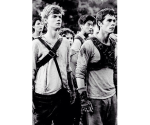 thomas sangster, the maze runner, and dylan o'brien image