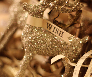 christmas, wish, and sparkle in so cal contest image