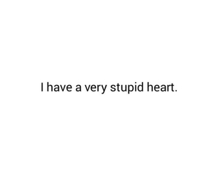 heart, quote, and stupid image