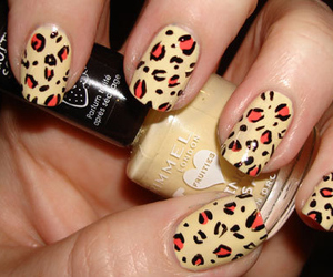 nails, leopard, and nail polish image