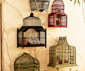 cage, birdcage, and bird image