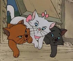 cat, disney, and aristocats image