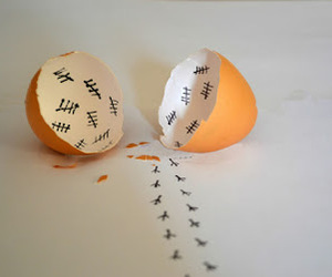 egg, Chicken, and funny image