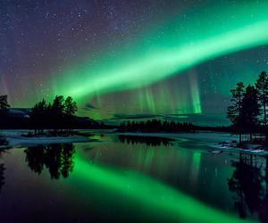 light, stars, and nature image