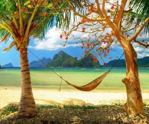 beautiful, Island, and trees image