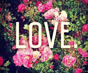 love, flowers, and rose image