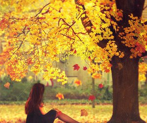 autumn, girl, and tree image