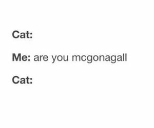 harry potter, cat, and mcgonagall image