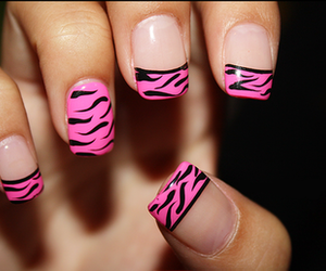 leopard, nails, and nail art image