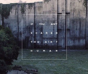 human, quote, and scared image