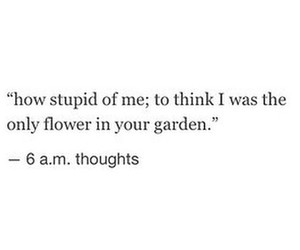 quote, flowers, and broken image