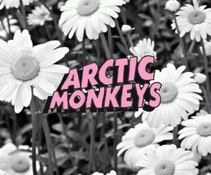 arctic monkeys, music, and flowers image
