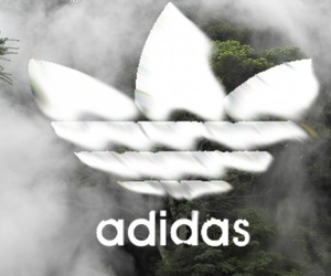 adidas, beautiful, and header image