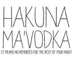 vodka, night, and hakuna matata image