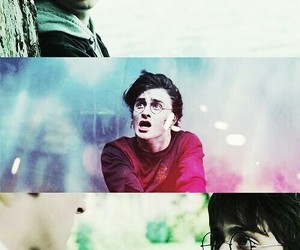 harry potter, love, and harry image