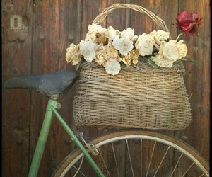 flowers, basket, and bike image