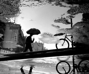 black and white, rain, and photography image