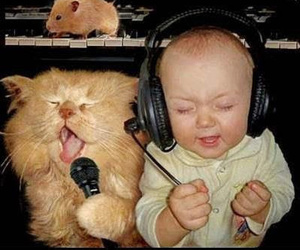 cat, baby, and music image