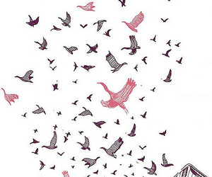 bird, pink, and ink image