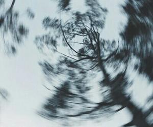tree, grunge, and nature image