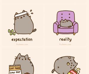 adorable, reality, and animal image