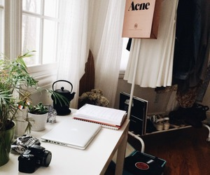 room, acne, and plants image
